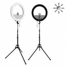 Кольцевая лампа ringO Prolamp (профессиональная)